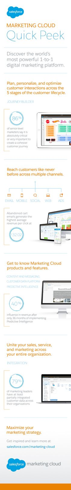Get a quick peek at the world's most powerful 1-to-1 digital platform for marketing: the Salesforce Marketing Cloud.