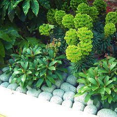 Beautiful Gardens Gunnera Passage Trebah Garden