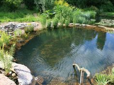 Prefer a rustic look? gartenART designers installed this cool pool in Herts in the UK in 2007. Don't you want to dip your toes in?  - GoodHousekeeping.com