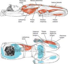 Supta Virasana Reclining Hero Pose B E N E F I T S — Stretches the abdomen…