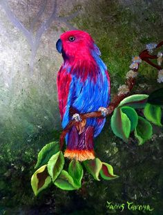 """Eclectus Parrot"", an original oil painting by Janis Tafoya. Prints available at: http://fineartamerica.com/featured/eclectus-parrot-janis-tafoya.html?newartwork=true"