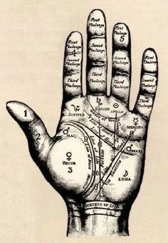 palmistry guide//location undecided