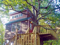 Camp in a real tree house in southern Illinois   ChicagoParent.com