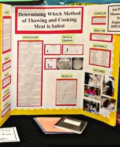 science fair project report examples