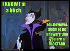 Yes I'm a bitch, but you're a fucktard Stupid Funny Memes, Funny Quotes, Hilarious, Funny Stuff, Random Stuff, Ghetto Quotes, Fun Funny, Disney Memes, Disney Villains