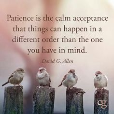 Patience is the calm acceptance that things can happen in a different order than the one you have in mind. David G. Allen