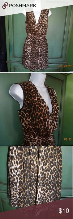 Leopard Dress This item is brand new! Beautiful leopard dress in size small.  Deep V neck and open back.  Back zipper closure. Fun & Flirt  Dresses