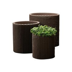 4 Admirable ideas: Painted Wicker Tips painted wicker tips.Wicker Kitchen Home wicker rattan vintage. Rattan Planters, Large Planters, Outdoor Planters, Outdoor Gardens, Outdoor Decor, Indoor Outdoor, Outdoor Spaces, Outdoor Living, Roof Gardens