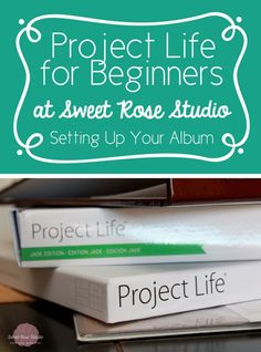 Katie at Sweet Rose Studio has an entire series for Project Life Beginners Project Life Scrapbook, Project Life Album, Project Life Layouts, Project Life Cards, Project 365, Project Life Organization, Project Life Planner, Pocket Page Scrapbooking, Scrapbooking Layouts