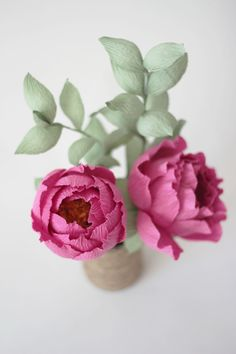 Pink Paper Peony  : Blooms in the Air