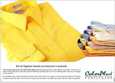 Superfine Giza cotton, in a range of Purple Club shirts from ColorPlus