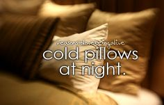reasons to love being alive: the cold side of the pillow on a hot summer's night.