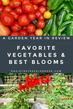 The October Garden   Angie The Freckled Rose Gardening For Beginners, Gardening Tips, Sustainable Gardening, Vegetable Gardening, Sustainable Living, Dragon Tongue Beans, What Can Chickens Eat, Hops Plant, Growing Carrots