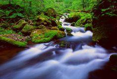 Mountain Stream Hymn 4