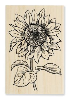 Shop for Stampendous Jumbo Cling Rubber Stamp-Sunflower. Get free delivery On EVERYTHING* Overstock - Your Online Scrapbooking Shop! Sunflower Sketches, Sunflower Drawing, Sunflower Art, Flower Art Drawing, Painting & Drawing, Wood Burning Art, Painting Patterns, Drawing Sketches, Sketching