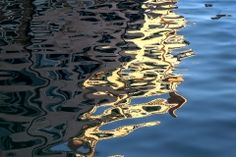 G17-3_venice_reflections