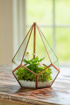 Faceted glass and copper-finished metal can add warmth to modern decor in a home or outdoor living space. The 9 1/2-inch tall terrarium is sold by Gardener's Supply Co. and could be the focal point of a tabletop or mantle.