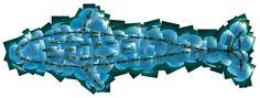 Junio. Patricio Robles Gil, Ballena azul humana, mosaico/ fotografía submarina,32.5x 12.5m, 2011. Colaboradores: Octavio Aburto y Roberto Chávez.