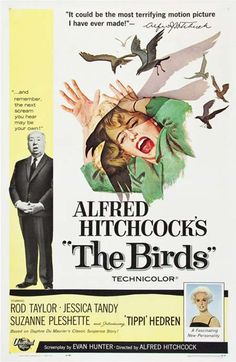 A great poster from The Birds - the unforgettable classic movie from Master of Suspense Alfred Hitchcock! Check out the rest of our excellent selection of Alfred Hitchcock posters! Need Poster Mounts. Classic Movie Posters, Horror Movie Posters, Classic Movies, Film Posters, Old Movie Posters, The Birds Movie, Love Movie, Scary Movies, Great Movies