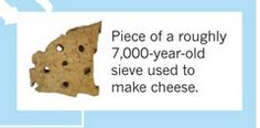 The oldest cheese- making archeological relics found in Poland.