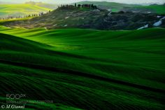 Crete Senesi Dream by mariano511