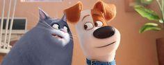 Noticias de cine y series: Mascotas se convierte en la película más taquillera del año en España