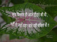 Hindi Qoutes, Shayari In Hindi, Golden Leaves, Dil Se, Short Quotes, Positive Quotes, Positivity, Joy, Thoughts