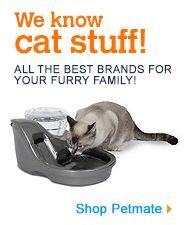 Cat Food & Treats