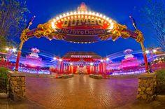Double Dumbo  photographer: Tom Brickerlocation: New Fantasyland  #DisneyParksPhotoProject