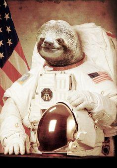 Картинки по запросу sloth astronaut