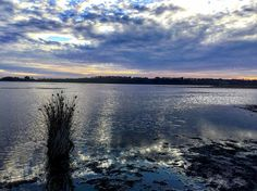 Absolutely love this place - it's my favourite walking place ever. Stunning while the sun is setting   #cloudporn #skyporn #water #scenic #destinationtowerhill #cloudstagram #warrnambool3280 #warrnambool #sky #skylovers #clouds #colourful #blue #lake #beautifuldestinations #beautiful #australia #travel #walking #exercise #healthy #lifestyle #dusk #eveningwalk #happy #destinationwarrnambool #nature #instanature #naturelovers by tbag_16