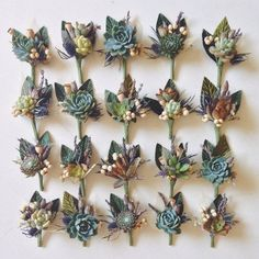 4 Assorted Succulent Boutonnieres by Eucca on Etsy