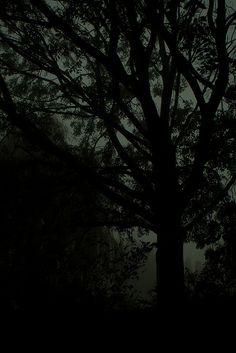 theme | a darker side - into the dark