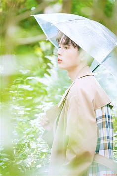 Yoo Seonho