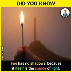 I think this is. a kind of lie. Cause there will be a small shadow. I think so. Wierd Facts, Wow Facts, Real Facts, Wtf Fun Facts, Funny Facts, True Facts, Weird, True Interesting Facts, Interesting Facts About World