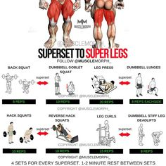 Want Super Legs? Try this Superset Quads & Hamstrings WorkoutLIKE IT, SAVE IT and FOLLOW @musclemorph_ for more exercise & nutrition tips tag a buddy who would appreciate this workout . ✳Enhance your progress with @musclemorph_ supps by clicking the link in our bio @musclemorph_ ➡MuscleMorphSupps.com #MuscleMorph  via ✨ @padgram ✨(http://dl.padgram.com)
