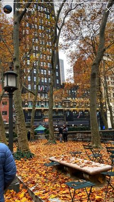 Autumn Aesthetic, City Aesthetic, We Fall In Love, Falling In Love, Autumn Cozy, Autumn Fall, Nyc Fall, City Vibe, Nyc Life