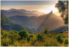 #GranCanaria #Canarias #CanaryIslands #Spain   CUMBRES DE GRAN CANARIA-LA PRIMAVERA-1 http://fc-foto.es/17428983