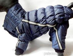 зимняя одежда для собак с капюшоном
