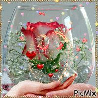 Most popular Picmix [p. 3 on - Most popular Picmix [p. 3 on - Beautiful Rose Flowers, Flowers Gif, Beautiful Flowers Wallpapers, Amazing Flowers, Happy Birthday Video, Happy Birthday Wishes Cards, Beautiful Nature Pictures, Beautiful Gif, Rose Images