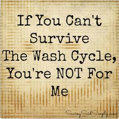 SavingSaidSimply.com - My Life Can Be Described in Laundry #humor