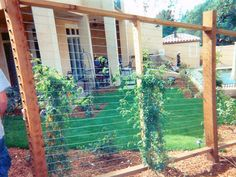 Cable rail fence for your garden plants