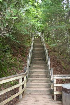 Bridge on the path to the waterfalls in the UP of Michigan