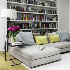 Comfy couch and awesome bookcase.