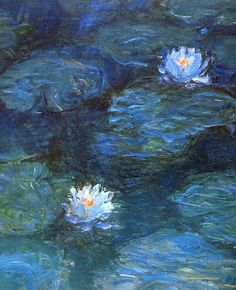 Water Lilies, Claude Monet who had a surfer y for his cataract, and perceived the blue frequencies in a wider Spectrum (UV) that's why his paintings have this particular blue tones ;)