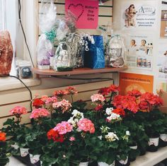 FIRST 100 CUSTOMERS RECEIVE FREE FLOWER- mothers day party @Hooper's Giveaways, Mothers, Glass Vase, Events, Healthy, Day, Flowers, Gifts, Free
