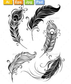 Set of Feathers — Photoshop PSD #stylized #white • Available here → https://graphicriver.net/item/set-of-feathers/9318613?ref=pxcr