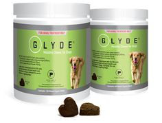 Nutraceuticals for Dogs with Arthritis | Australian Dog Lover
