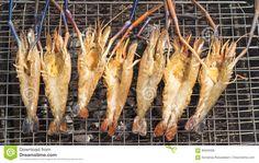 16 Best Raw Giant Freshwater Prawn, Giant River Shrimp