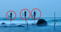 These Are The Ingenious Stilt Fishermen Of Southern Sri Lanka.